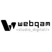 Webqam